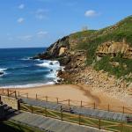 www.oceanotortuga-150x150
